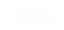 Primavera Vineyard